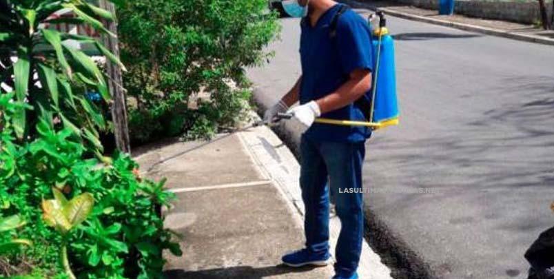OPS informa que situación del dengue es compleja en América Latina