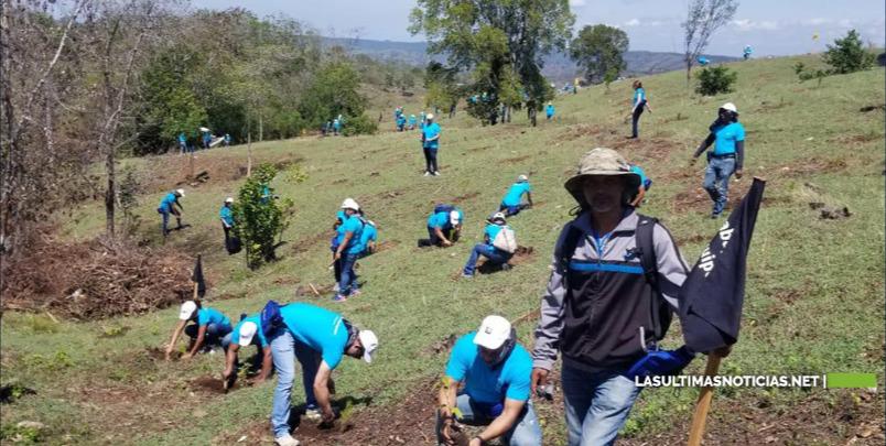 Plan reforestación en cuenca del río Yaque del Norte