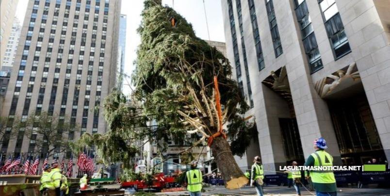 Neoyorquinos reciben con entusiasmo al famoso árbol del Rokefeller