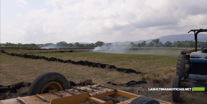 Ministro Ángel Estévez adviertea propietarios de fincas arroceras suspender práctica de quemar los rastrojos de arroz